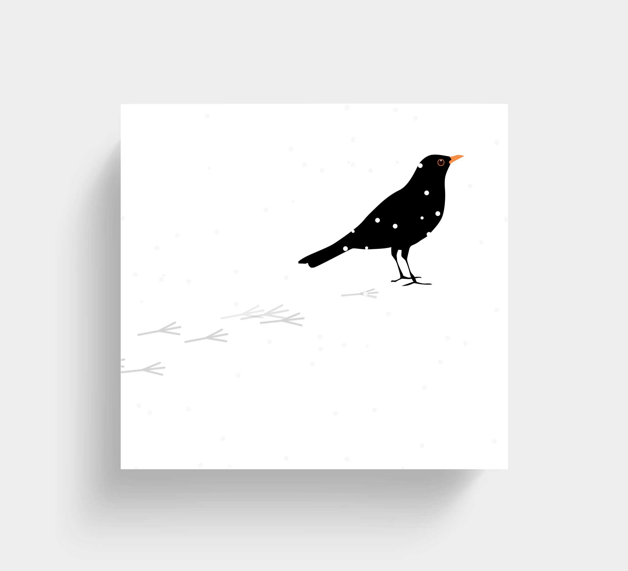 blackbird_v_ltgrey