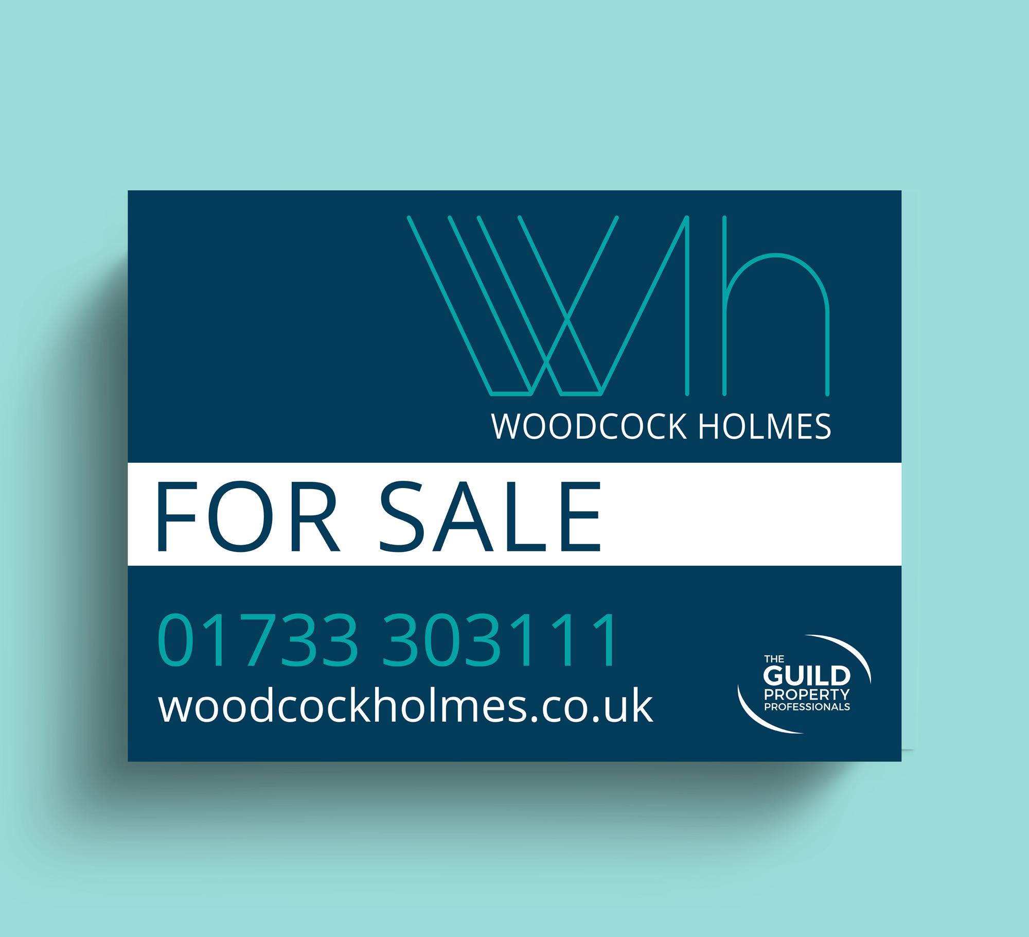 _woodcock_holmes_board_turq
